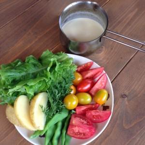 バーニャカウダソースと採れたての野菜。 サンチュ、トマト、モロッコインゲン、ジャガイモ。